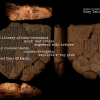 42.Clay Tablets